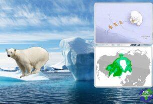 Dan polarnih medvjeda