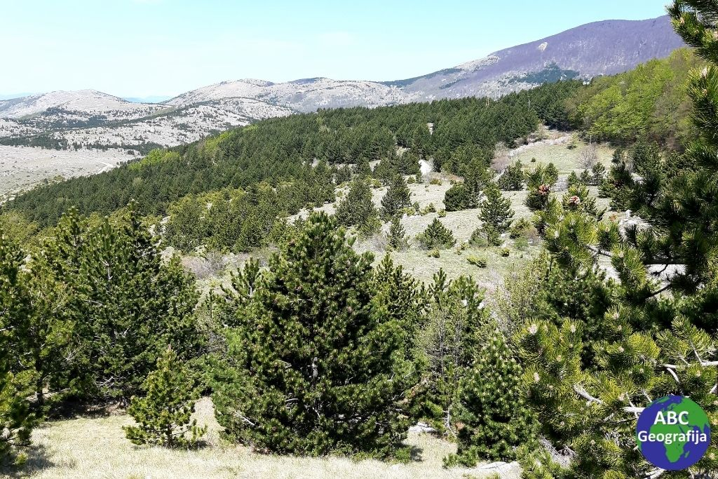 Sjeverni Velebit - krajobraz